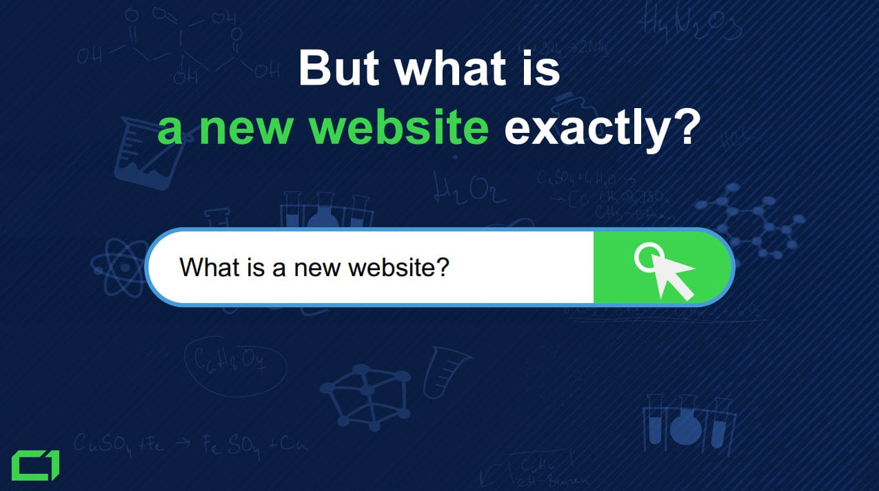How-Much-Content-is-Not-Indexed-in-Google-in-2019 - 4.-What-is-a-new-website